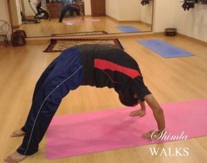 Yoga in Shimla